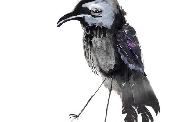 Illustration of a raven