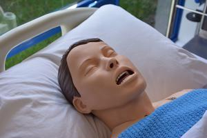 head and shoulders of a synthetic patient on a bed