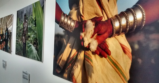 A close up shot of several fairtrade pictures on display at the university.