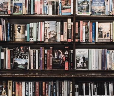 The covers of many books on some shelves